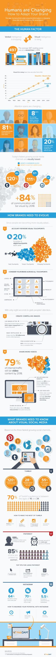Visual Media Changes How Humans Consume Information (Infographic)   via @borntobesocial