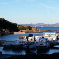 «#coindeparadis #portfereol #cotedazur #lesissambres #mermediterranee #alpemaritime #journeeprintaniere  #baladeenborddemer»