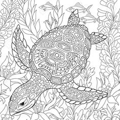 Zentangle stylized cartoon turtle swimming among sea algae. Hand drawn sketch for adult antistress coloring page, T-shirt emblem, logo or tattoo with doodle, zentangle, floral design elements. Ocean Coloring Pages, Turtle Coloring Pages, Animal Coloring Pages, Coloring Book Pages, Printable Coloring Pages, Doodle Coloring, Cartoon Turtle, Zen Colors, Diy Y Manualidades