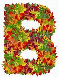 B, autumn alphabet isolated on white Monogram Alphabet, Alphabet And Numbers, Dahlia Flower, Flowers, Maria Jose, Bible Prayers, Good Notes, Fall Harvest, Emoticon