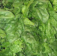 Certified Organic Vegetables in Long Valley NJ - https://minimacfarm.com/certified-organic-vegetables-in-long-valley-nj/