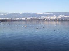Lac de Neuchâtel et le Jura