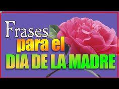 Frases Para El Dia De La madre - Frases De Amor Para Mamá, Feliz Día De La Madre, Querida Mamá 2015 - YouTube