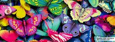 Get this Colorful Butterflies Facebook Covers for your profile from Get-Covers.com.