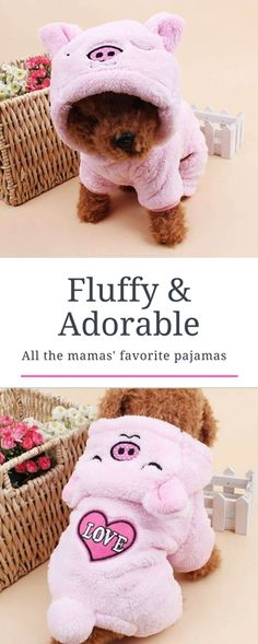 Fluffy Pajamas For Small Dogs Cutest Dogs, Adorable Dogs, Cute Dogs And Puppies, Little Puppies, Baby Dogs, I Love Dogs, Presents For Dog Lovers, Gifts For Dog Owners, Dog Lover Gifts