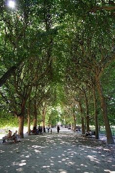 Jardin du Luxembourg, Paris I remember this as a very beautiful place
