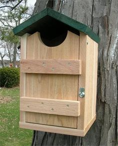 """Entrance hole approximately 4"""" diameter. Also for Kestrels & Flickers. Dimensions: 9"""" x 10"""" x 15"""". Weight: 10 lbs. Western Red Cedar Construction. Natural b"""