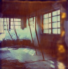 by Amalia Chimera