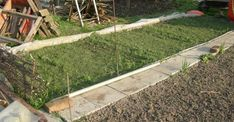 Blog a vegyszermentes kertészetről. Biokert. Konyhakert vegyszermentesen. Bevált praktikák a kertben. Balcony Garden, Stepping Stones, Sidewalk, Herbs, Wood, Outdoor Decor, Green, Home Decor, Gardening