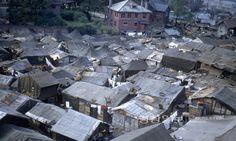 경상일보 Korean War, Old Pictures, Osaka, Vintage Photos, City Photo, Past, Survival, Culture, History