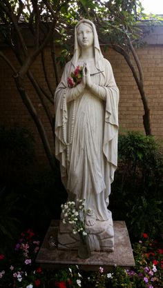 """See 65 photos and 2 tips from 344 visitors to All Saints Catholic Church. """"Daily Mass, the Holy Rosary & Eucharistic Adoration - N. Madonna, Catholic Religion, Catholic Art, Blessed Mother Mary, Blessed Virgin Mary, Religious Icons, Religious Art, La Salette, Mama Mary"""