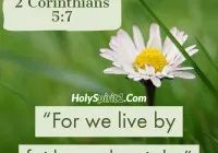 Bible Verses About 2 Corinthians, Regular Update Bible Verses, Short Bible Verses, Must Read and Receive Our Blessings in Our Life. And share these Verses. Short Bible Verses, Powerful Bible Verses, Gods Glory, Worship Songs, Gospel Music, Eagle, How Are You Feeling, Faith, Loyalty