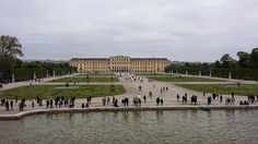Matkaileva maratoonari: Lenkki Wienissä