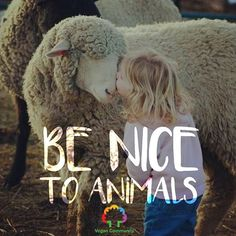 Put The Golden Rule into everyday practice and include all, both human and nonhuman! Learn reverence for life. Be kind. Be vegan. Save Animals, Animals And Pets, Beautiful Creatures, Animals Beautiful, Vegan Quotes, Why Vegan, Animal Cruelty, Animal Welfare, Animal Quotes