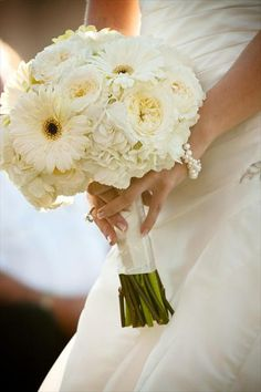 White gerberas! My favourite flower, perhaps a smaller bouquet for bridesmaids with there blue dresses