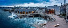 Monterey Bay Aquarium – Official Site