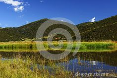 wetland landscape at pudacuo national park , shangri la , china. with blue sky