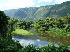 """""""Waipio Valley - a lush paradise """" by TravelPod blogger friesendm from the entry """"Waipio Valley - Valley of the Kings"""" on Thursday, January 17, 2013 in Honoka'a, United States"""