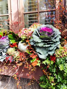 Decorative cabbage: flowering containers and flower beds to deep frost Fall Window Boxes, Window Box Flowers, Flower Boxes, Window Planters, Fall Planters, Planter Boxes, Planter Ideas, Outdoor Planters, Garden Planters
