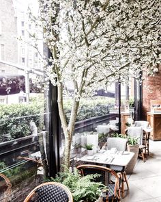 Dalloway Terrace the secret garden hidden away in the heart of the city, just a few steps away from Covent Garden and Oxford Street. It is an elegant, poetic and quintessentially English space if I ever did see one. The Secret Garden, Hidden Garden, Covent Garden, Musical London, Coconut French Toast, Highgate Cemetery, Bottomless Brunch, Brunch Spots, London Places