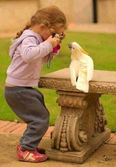 So adorable! Little girl taking a picture of a bird!