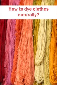 How to dye clothes naturally? – Gaston In Barcelona How To Dye Clothes, Buy Seeds, Color Test, Organic Cotton T Shirts, Gaston, You Are Perfect, Different Shapes, Dyes, Natural Materials