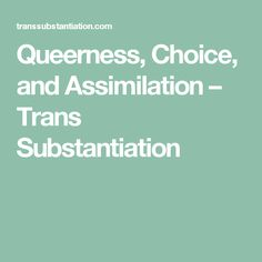 Queerness, Choice, and Assimilation – Trans Substantiation