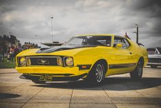 In this article, you can see Full HD & 4K Muscle cars wallpapers for Desktop. On top of that, these Muscle cars wallpapers are the full-screen desktop wallpaper. Moreover, all wallpapers are high-resolution wallpapers for your pc. For more Muscle cars PC wallpapers, visit my website. Auto Retro, Retro Cars, Social Activities, Indoor Activities, Jaguar, Yellow Mustang, Volkswagen, Running Photos, Capacity Building