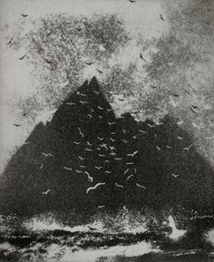 Chattering Birds- Norman Ackroyd Gannets on Little Skellig Norman Ackroyd, Contemporary Abstract Art, Landscape Drawings, Online Painting, Selling Art, Wildlife Art, Bird Art, Light In The Dark, Printmaking