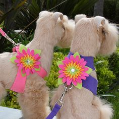 OBSESSED....!!!: Susan Lanci Island Flower Harnesses- so cute!!!