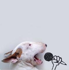 Художник и собака создают потрясающие портреты (Фоторепортаж) - В мире чудес