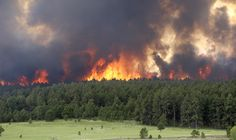 black forest fire - how sad, second fire in a year....400 homes lost