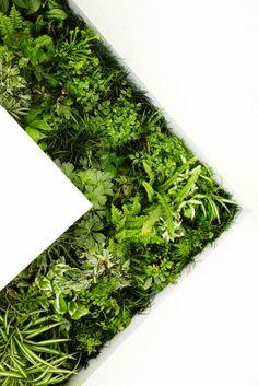 naruse inokuma architects | green bathroom concept house vision, 2013