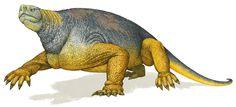 Nuovi scavi: scoperti altri resti fossili di dinosauro nei pressi della Torre del Porticciolo. FOTO | Sardegna Live
