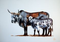 Justin Hervey Nguni - the apprentice