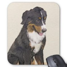 Bernese Mountain Dog Mouse Pad - dog puppy dogs doggy pup hound love pet best friend
