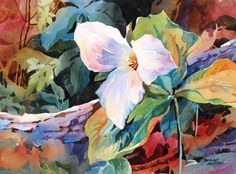Watercolor dogwood bloom – Bridget Austin