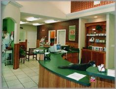 Cooridinated theme: Ingleside Animal Hospital, Ingleside, Texas - dvm360