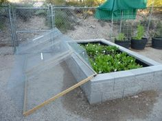 Wire cages with PVC handles to cover and protect raised beds from gophers/chipmunks - fully removable, interesting!