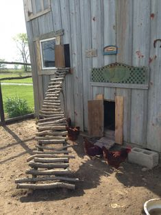 Building A DIY Chicken Coop If you've never had a flock of chickens and are considering it, then you might actually enjoy the process. It can be a lot of fun to raise chickens but good planning ahead of building your chicken coop w Chicken Barn, Diy Chicken Coop Plans, Portable Chicken Coop, Chicken Coop Designs, Backyard Chicken Coops, Building A Chicken Coop, Chickens Backyard, Chicken Fence, Best Egg Laying Chickens