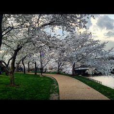 river walk in the spring, richmond va -
