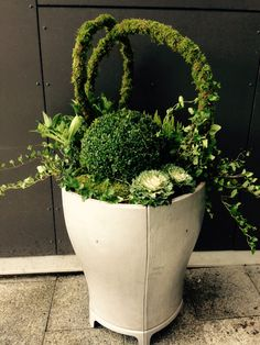 Höstplantering i offentlig miljö #flowerpot #winterpot #autumn #garden #flower #callunavulgaris #hedera Garden Crafts, Garden Projects, Container Plants, Container Gardening, Flower Drawing Images, Pot Jardin, Fleurs Diy, Pot Plante, Outdoor Flowers