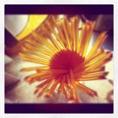 """Sunflower?"""