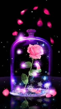 Free Beauty Or Beast Wallpaper For Your Phone Cute Galaxy Wallpaper, Beautiful Wallpaper For Phone, Love Wallpaper Backgrounds, Flower Phone Wallpaper, Beautiful Flowers Wallpapers, Neon Wallpaper, Cute Disney Wallpaper, Butterfly Wallpaper, Wallpaper Iphone Cute