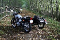 Suzuki TU250X and Cozy sidecar - a perfect match!