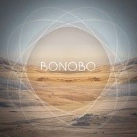 Maya Jane Coles : Something In The Air - Bonobo Remix by bonobo on SoundCloud
