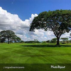 """@buenaventuragc's photo: """"Repost by @miguelmarincasero """"Hoyo 16 Buenaventura. No comments!!! #BuenaventuraGolfClub #Buenaventura #Panama #Golf @buenaventuragc  @buenaventuraresort"""" #Panama #golf #NicklausDesign #golfcourse"""""""