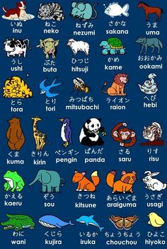 Japanese animals in hiragana Learn Japanese Words, Study Japanese, Japanese Culture, Japanese Wolf, Japanese Notebook, Japanese Things, Japanese Kanji, Japanese Names, Japan Travel