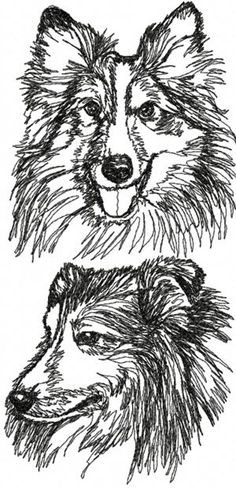 Advanced Embroidery Designs - Shetland Sheepdog Set