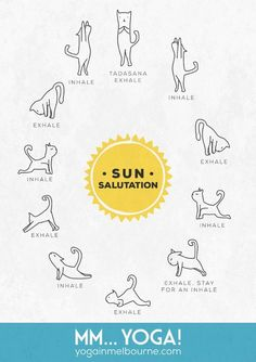 Free Printable Kitty Sun Salute Poster to put up on your wall! #cutesthingever